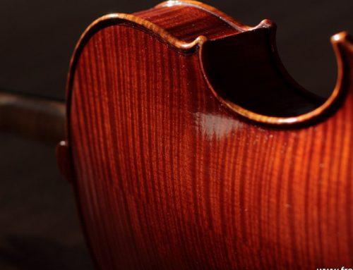 Wolfgang Amadeus e il violino